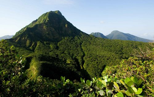 The luscious hills of Dominica